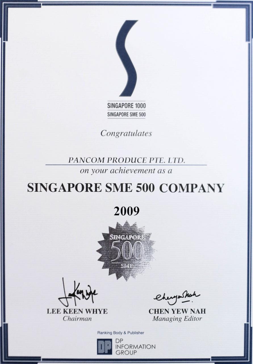Singapore SME 500 Company 2009